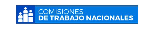 Comisiones de Trabajo Nacionales